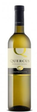 quercus-sauvignonasse-g3