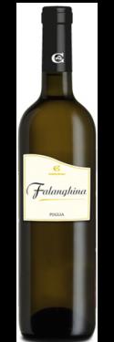 Falanghina